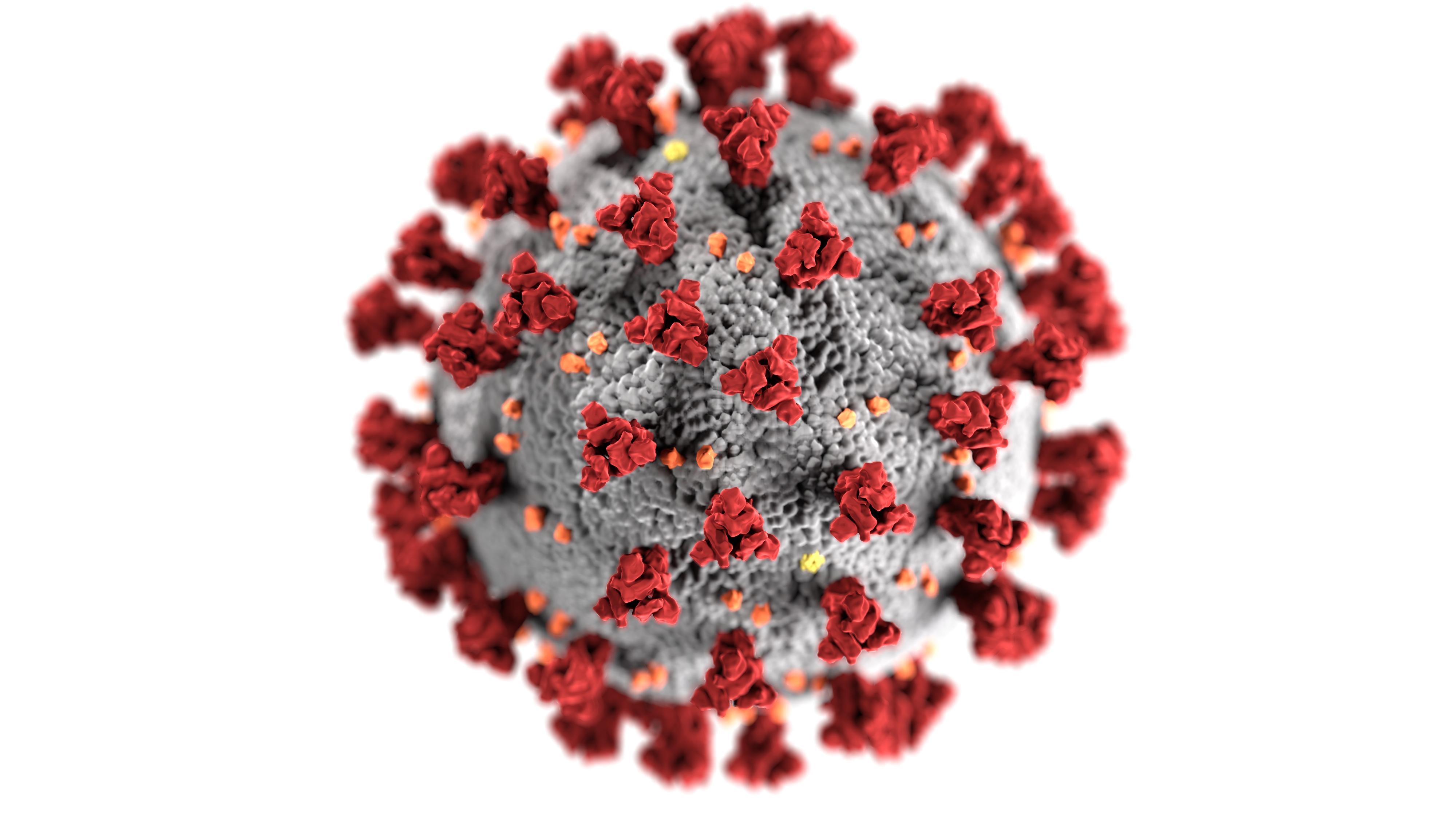 Detailed view of a coronavirus